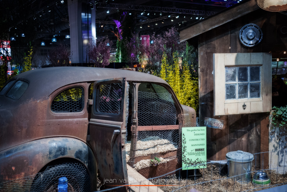 Old car transformed in a chicken coop at Philadelphia Flower Show